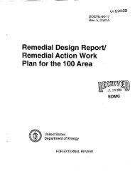 Remedial Action Work Plan for the 100 Area - Hanford Site