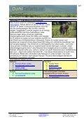 Tanzania resa med 2 dagar safari - Dahl Safaris - Page 5