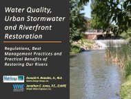 Water Quality, Urban Stormwater and Riverfront Restoration