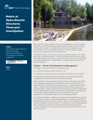 BMT Debris Management for Hyd... - BMT Group
