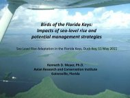 Birds of the Florida Keys: Impacts of sea-level rise and potential ...