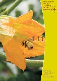 15. Polinización natural mediante el uso de abejorros - Proexport