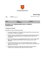 Ft-sak 005/09 Bygging av ny videregående skole i Arendal