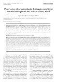 Revista Brasileira de Ornitologia - Sociedade Brasileira de Ornitologia - Page 2