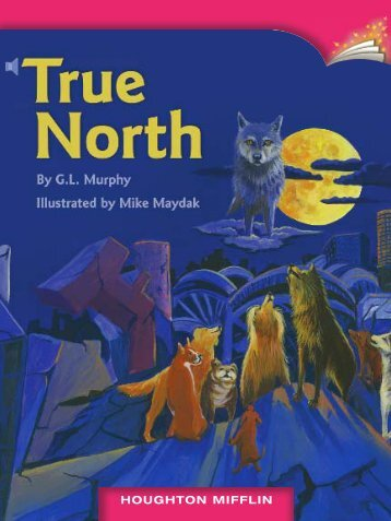 Lesson 12:True North