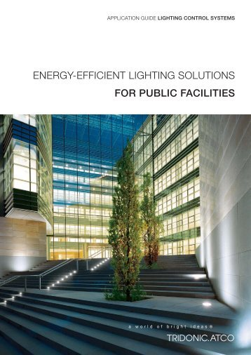 ENERGY-EFFICIENT LIGHTING SOLUTIONS FOR PUBLIC ...