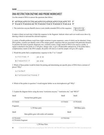 restriction enzyme worksheet worksheets whenjewswerefunny free printable worksheets and activities. Black Bedroom Furniture Sets. Home Design Ideas