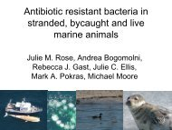 Antibiotic Resistant Bacteria in Stranded, Bycaught and Live Marine ...