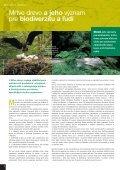 Mŕtve drevo - živé lesy - Page 6