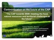 Key Considerations in the CAP Reform Debate - International Food ...