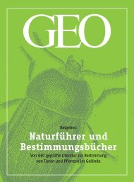 Ratgeber Naturführer und Bestimmungsliteratur 2006