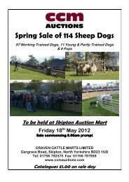 Spring Sale of 114 Sheep Dogs - CCM Auctions