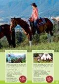 Nationalparkregion Ennstal - Pferdeland Nationalpark Kalkalpen - Seite 5