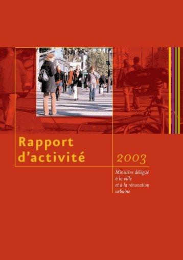 Rapport d'activité 2003 - Délégation interministérielle à la ville