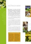 PDF 6 MB - Touristik Marktoberdorf - Seite 4