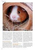 Wohnen nach Wunsch - Zooshop-Max - Page 6