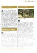 """Broschüre """"Naturpark für alle"""" - Naturpark Hoher Fläming - Seite 7"""