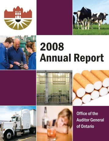 2008 Annual Report of the Office of the Auditor General of Ontario