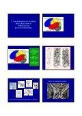 Suzanne Zeedyk's Presentation - eduBuzz - Page 4