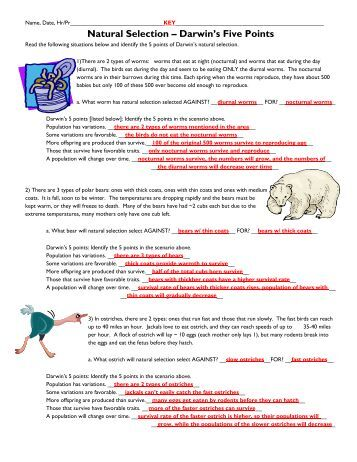 Printables Natural Selection Worksheet selection darwins five points fulton county schools natural schools