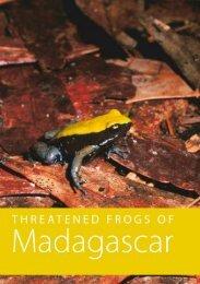 THREATENED FROGS OF Madagascar - Università degli Studi di ...