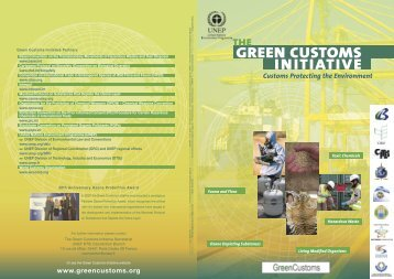 Flyer - Green Customs Initiative