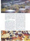 Özet/Tam metin - Page 4