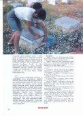 Özet/Tam metin - Page 6