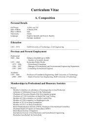 Curriculum Vitae - Geo-Engineering - TU Delft