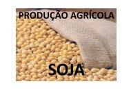 PRODUÇÃO AGRÍCOLA - Mercosoja 2011