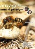 Les abeilles sauvages - Page 2