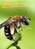 Les abeilles sauvages - Page 6