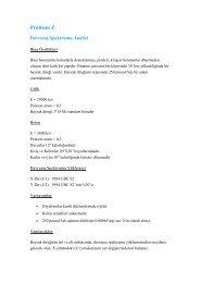 Problem Z (.pdf)