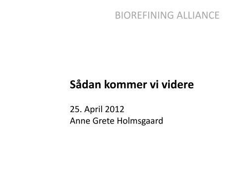 Bio-raffinaderi - Bioenergi