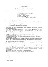 Tranger Károly: Francia-magyar történelmi kapcsolatok (pdf)