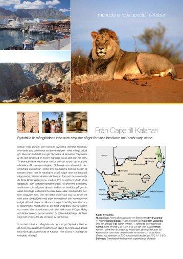 Från Cape till Kalahari - Solresor