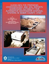 guidelines for preparing hydrogeologic and soil reports addressing ...
