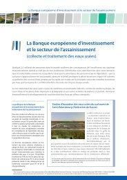 La Banque européenne d'investissement et le secteur de l ...