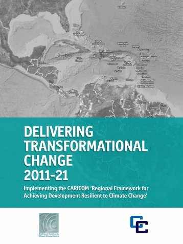 Implementation Plan - CDKN Global