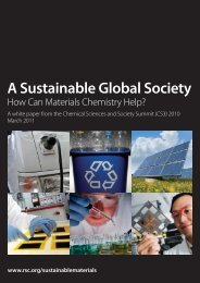 A Sustainable Global Society