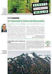 Newsletter Schutzwald Schweiz - Fachstelle für Gebirgswaldpflege