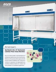 Up-Sized 2.4m / 8' Horizontal Laminar Flow Clean Benches - Esco