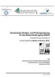 und Prüfungsordnung für den Masterstudiengang ... - Hochschule Ulm