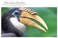 Download: presse-SFReise23-11-1.pdf - Die Reisejournalisten