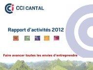 Rapport d'activité 2010 - (CCI) Cantal