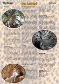 Tolle Gewinne Tierwelt ... Der Leopard Tolle Basteltipps - Seite 3