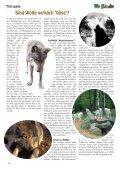 Tolle Gewinne Tierwelt ... Der Leopard Tolle Basteltipps - Seite 4