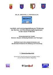 1. Zwischenbericht - beruflicheschulen-modellversuche.de