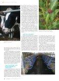 Sortir des sentiers battus - Fédération des producteurs de lait du ... - Page 4