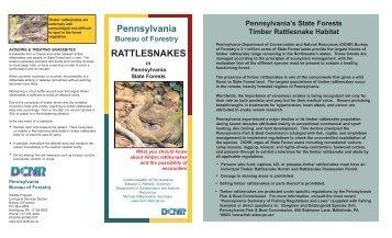 Rattlesnakes in Pennsylvania